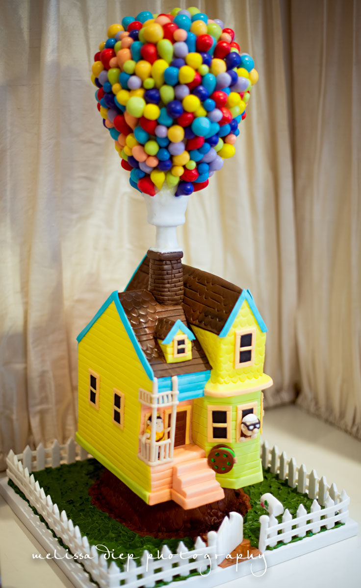 Disney Up Themed Birthday Party-Disney Up Inspired Party-1372
