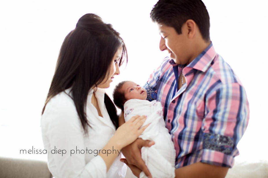 arlington heights family photographer