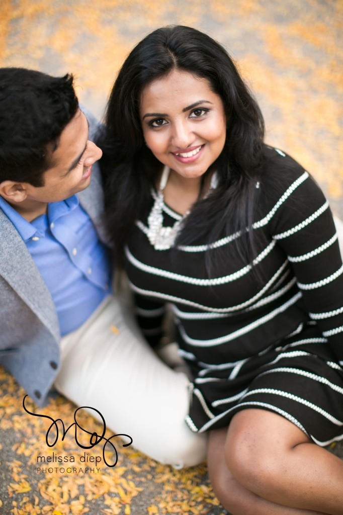 alfred caldwell lily pool engagements