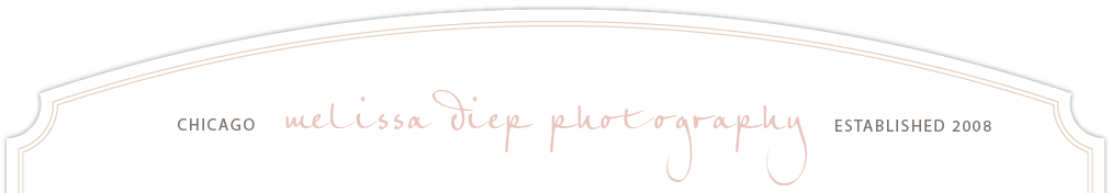 Wedding Photographers Chicago | Melissa Diep Photography | Blog logo